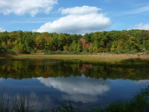 botanical garden reservoir loop trail